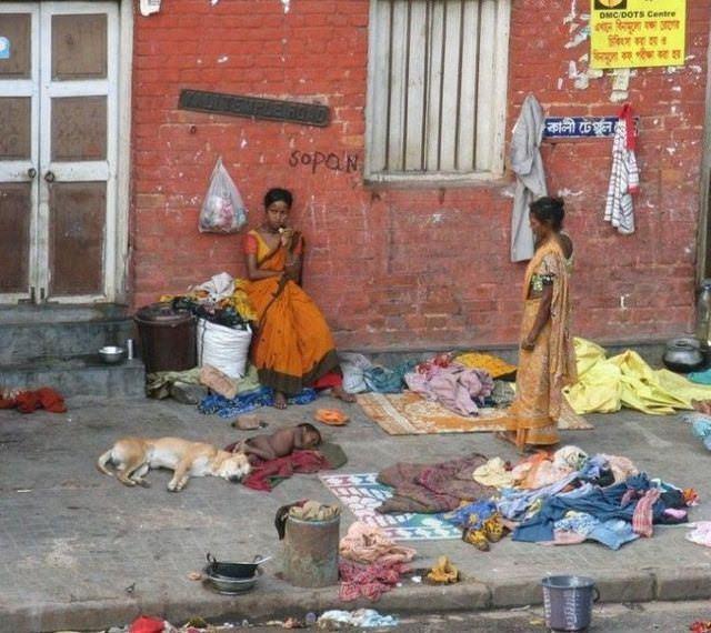 India 44