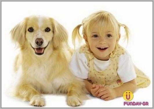Pets 221