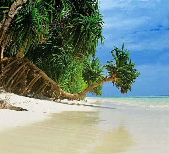 Υπέροχες παραλίες (22)
