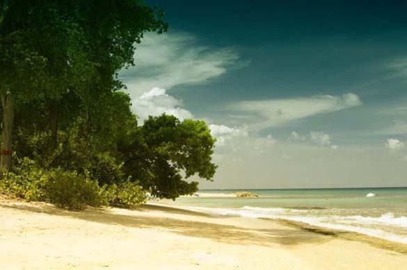 Υπέροχες παραλίες (24)