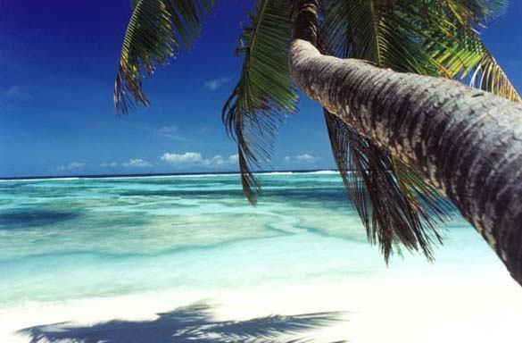 Υπέροχες παραλίες (31)