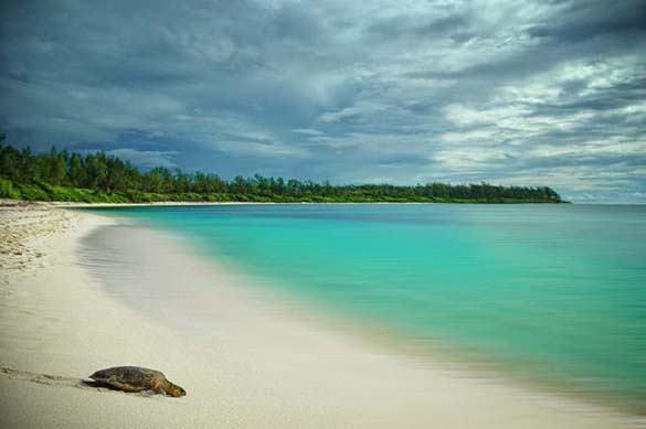 Υπέροχες παραλίες (33)