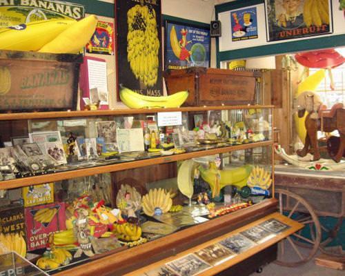 """Το Μουσείο Μπανάνας στην πόλη Auburn της Πολιτείας Ουάσιγκτον φιλοξενεί 4.000 αντικείμενα σχετικά με  το """"τελειότερο φρούτο του  κόσμου"""". Συνειρμοί με το από που  προέρχονται οι μπανάνες και ποιοί τις έφεραν στις ΗΠΑ και με ποιό τρόπο, θα πρέπει εδώ να αποφεύγονται"""