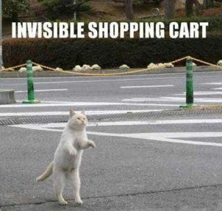 Cat Invisible Shopping Card Funday.gr