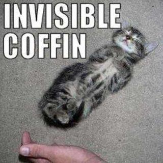Invisible Coffin Cat Funday.gr