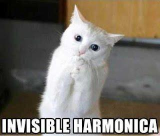 Invisible Harmonica Cat Funday.gr