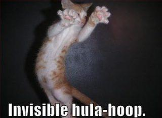 Invisible Hula Hop Cat Funday.gr