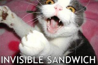 Invisible Sandwich Cat Funday.gr