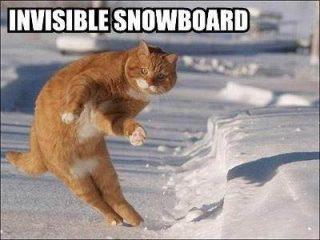 Invisible Snowboard Cat Funday.gr