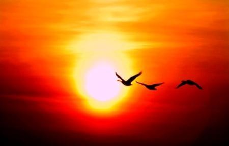 231317 Sunrise