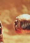 10 πράγματα που δεν γνωρίζατε για τον E.T.