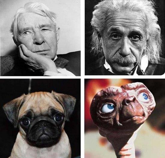 Et Einstein