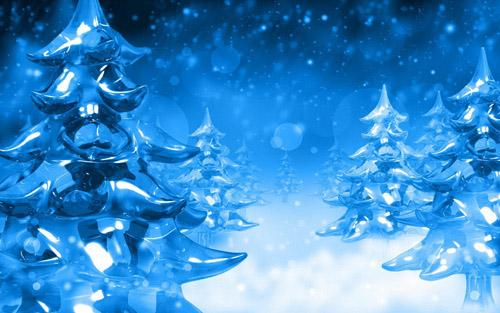 Ice Firs Wallpapers 7717 1280x800