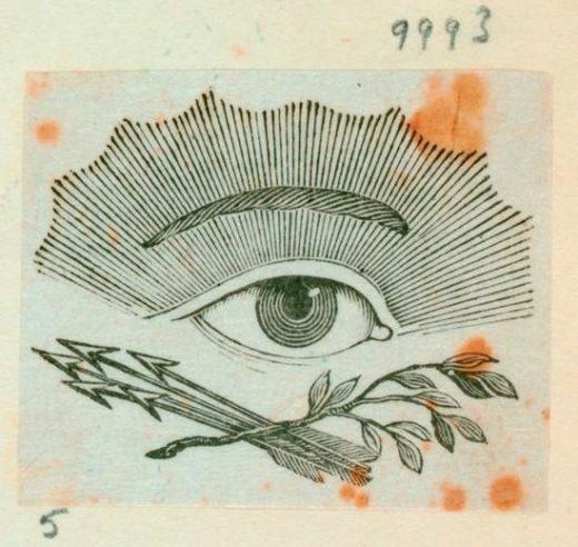 Great Eye Americas First Illustrator Alexander Anderson