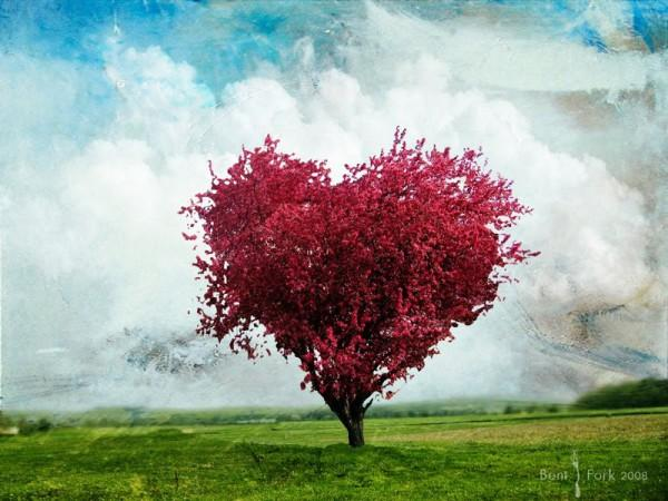 Love Is The Essence Of Life 14 600x450
