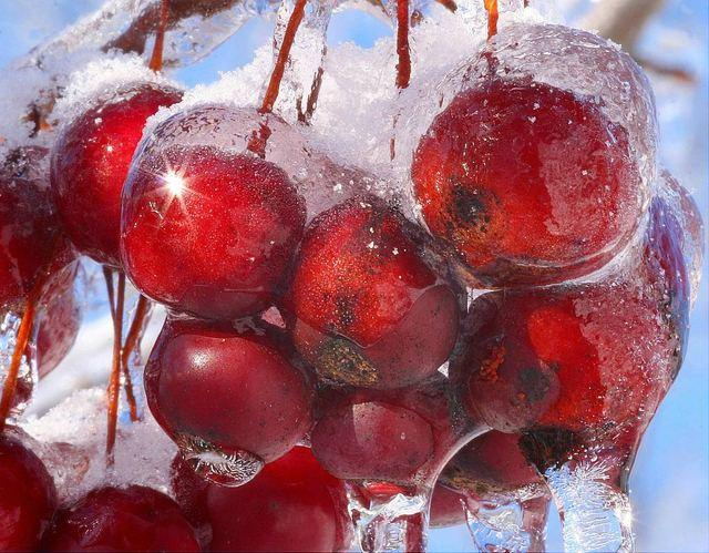 Η Φύση δημιουργεί έργα τέχνης στο πάγο