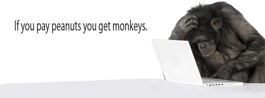 facebook-covers-monkey