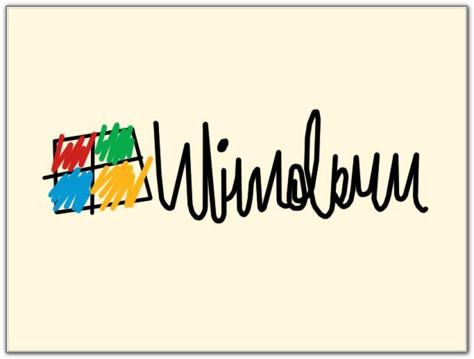logo-windows-by-doctors