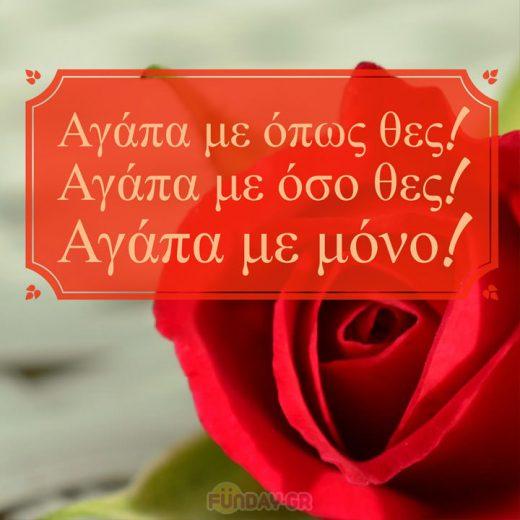 Euxes Agapis